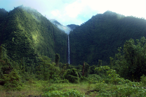 Sinaloa, the highest waterfall in Samoa. This is where I spent the second half of the summer