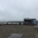 This is the whaling shack! They pull the whale up right in front and begin processing it.