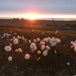 This is a picture of sunset on the Beaufort Sea.