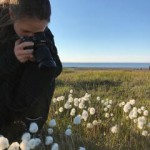 Anna Reside taking photos of the cotton grass